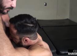 Нижний ебарь отсасывает мышцу перед анальным сексом