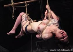 Татуированная подвеска рабства Реверса в консервной и синичной пытке