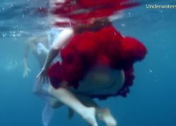 'Тенерифе подводное порно'